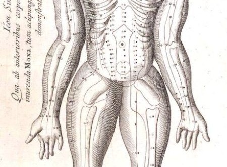 Acupuncture was first introduced into Western Medicine by RHYNE, Willem ten (1647-1700)